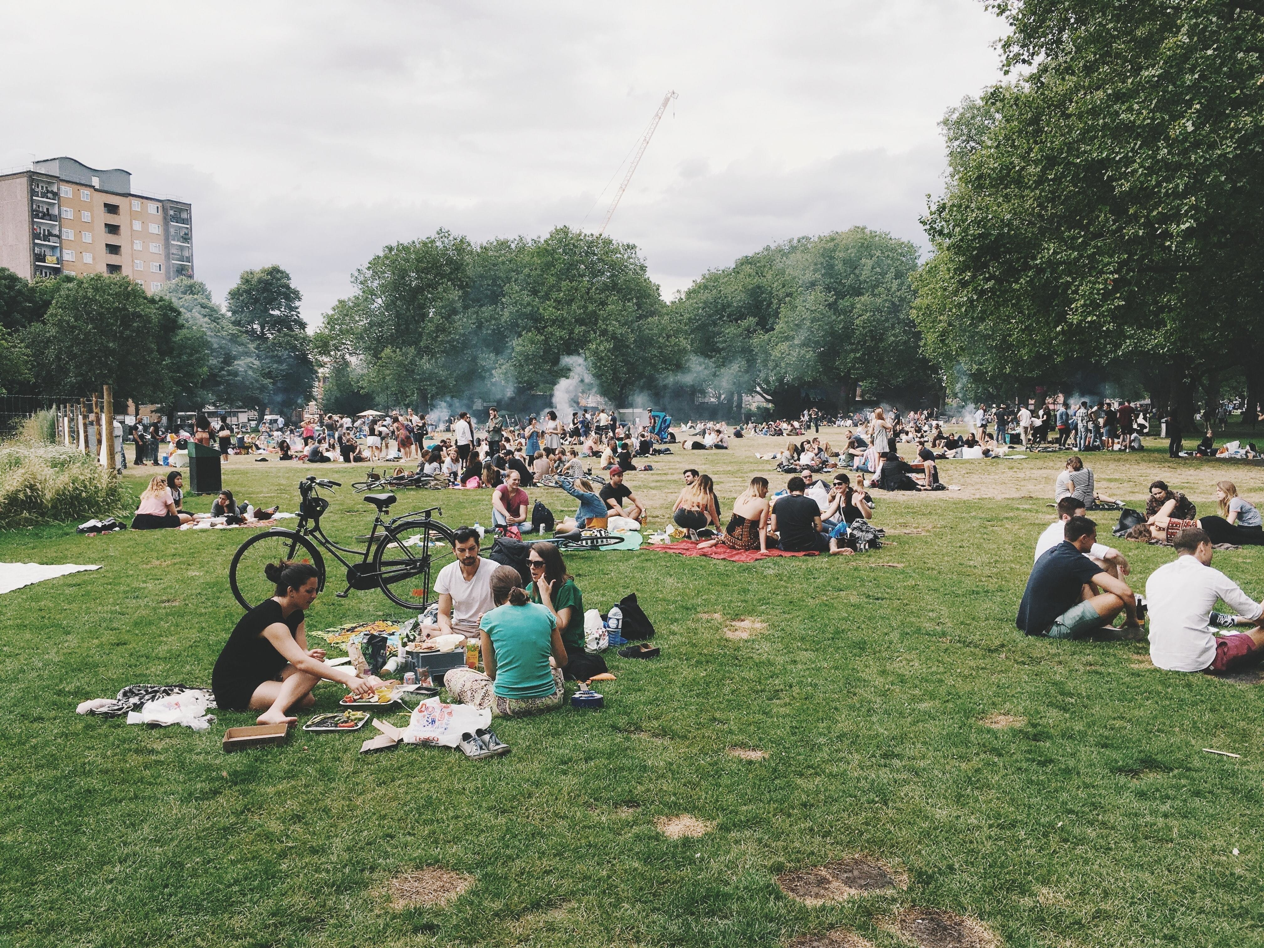 people having picnics in an urban park