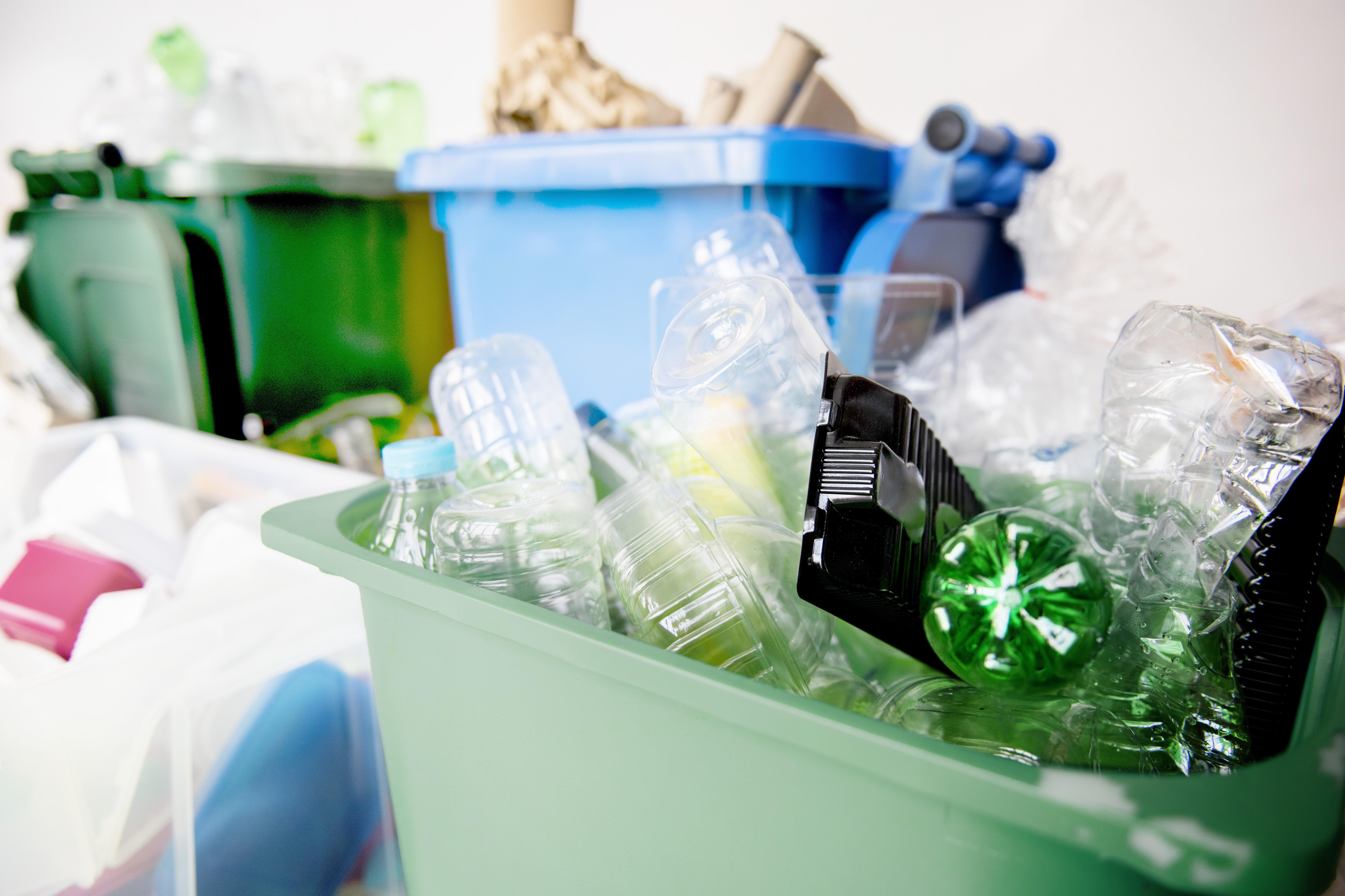 Plastic bottles in recycling bins.