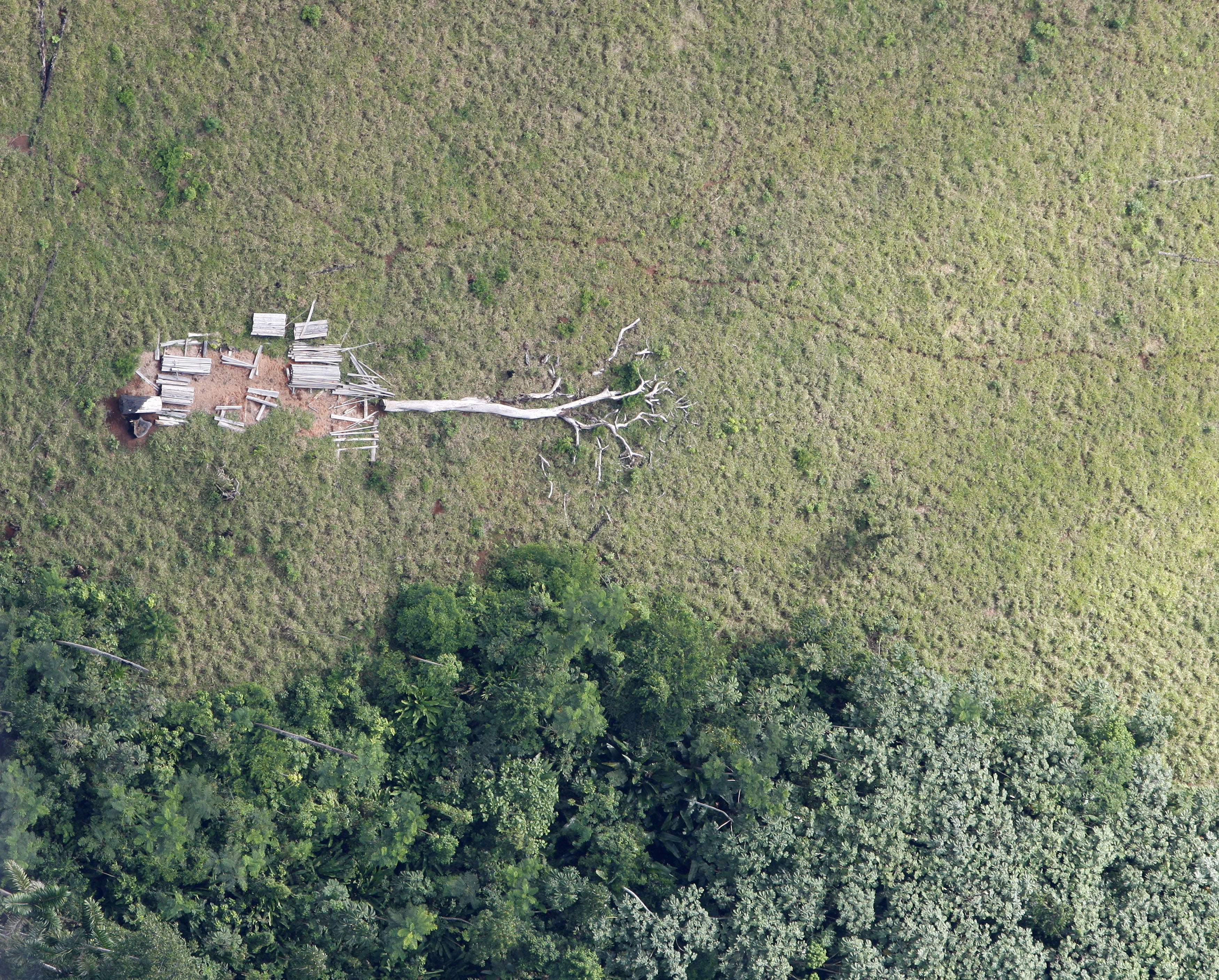 An aerial view of a deforested Amazonian jungle is seen close to Maraba, in Brazil's central state of Para in this May 3, 2009 file photo.  Soon thousands of cows will be chewing pasture on the freshly cleared land in Brazil's Amazon state of Para, just a tiny part of Brazil's 200-million-strong commercial cattle herd, the world's biggest, that makes it a beef superpower.  More than 70 million are in the Amazon area, three for every person. This is where the industry has grown fastest in recent years, a trend activists say is due to cheap land, widespread illegal clearing and weak government enforcement.