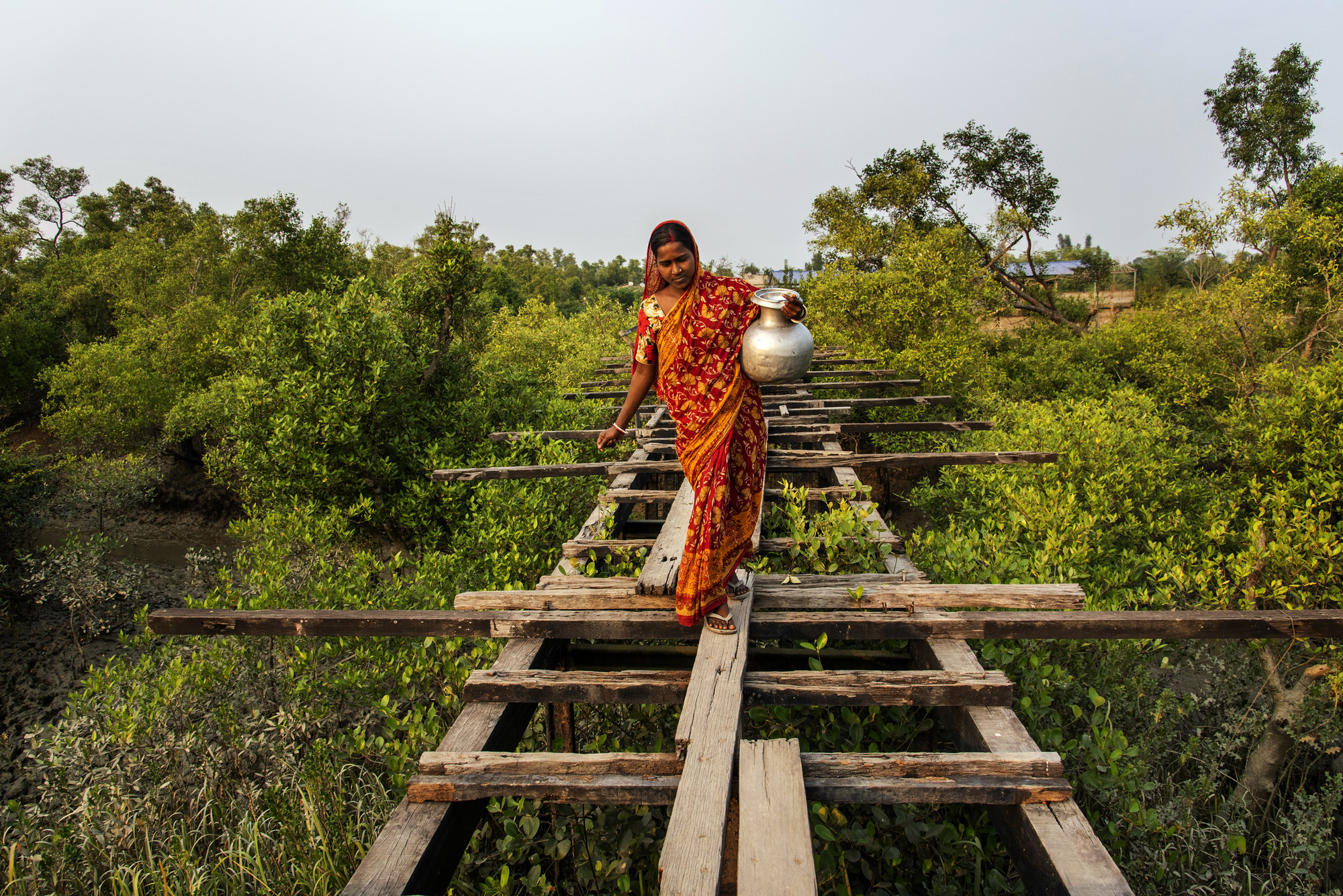 Susmita Mandal Jana, a 22-year-old housewife,  who is residing in Madhab Nagar area of Pathar Pratima under South 24 Parganas district of West Bengal, India is crossing a highly risky broken bridge with a big pot to collect the drinking water.