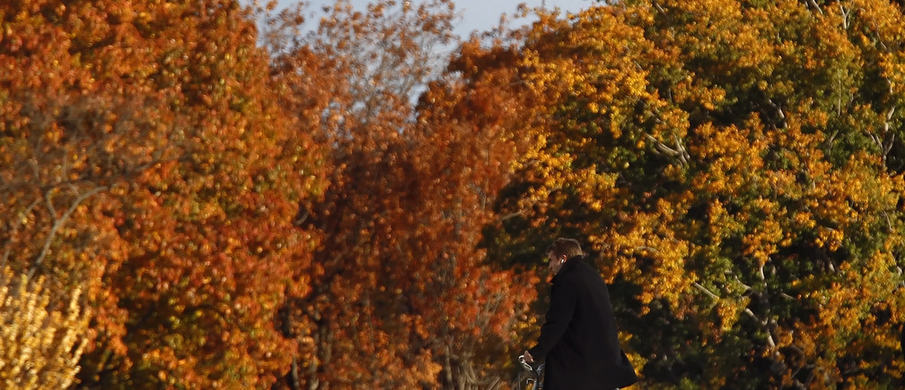 A cyclist peddles past the autumn foliage near the Capitol building on Capitol Hill in Washington, November 17, 2010.   REUTERS/Jim Young   (UNITED STATES - Tags: POLITICS SOCIETY) - RTXUQZH