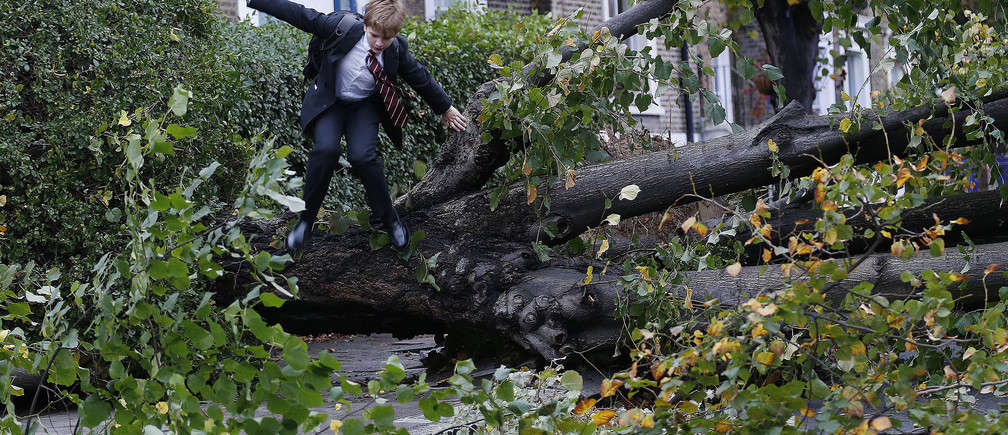 """Theo Harcourt, a 13-year-old student, jumps over a fallen tree as he makes his way to school in Islington, north London October 28, 2013, after strong storm winds and rain battered southern parts of England and Wales early on Monday, forcing flight cancellations, disrupting trains and closing roads and major bridges before the start of rush-hour. Local media dubbed the storm """"St. Jude"""", after the patron saint of lost causes who is traditionally celebrated on October 28. REUTERS/Olivia Harris (BRITAIN - Tags: ENVIRONMENT DISASTER TPX IMAGES OF THE DAY) - GM1E9AS17M101"""