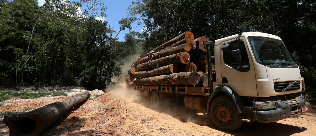 A truck is seen loaded with logs cut from the Bom Retiro deforestation area on the right side of the BR 319 highway near Humaita, Amazonas state, Brazil September 20, 2019. Picture taken September 20, 2019. REUTERS/Bruno Kelly - RC15A8D3EFF0