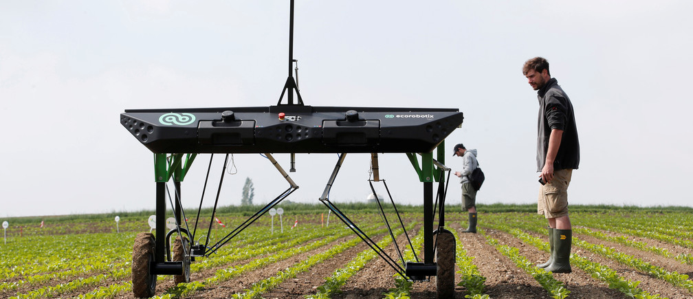 The prototype of an autonomous weeding machine by Swiss start-up ecoRobotix is pictured during tests on a sugar beet field near Bavois, Switzerland May 18, 2018. Picture taken May, 18, 2018. REUTERS/Denis Balibouse