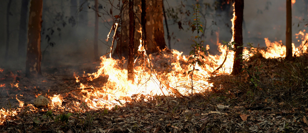 Small fires along the eastern edge of the Currowan fire still burn on the Princes Highway near in Milton, Australia January 5, 2020. REUTERS/Tracey Nearmy - RC2E9E9NNINZ