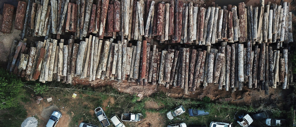 An aerial shot of logs illegally cut from Amazon rainforest in Para state, Brazil.