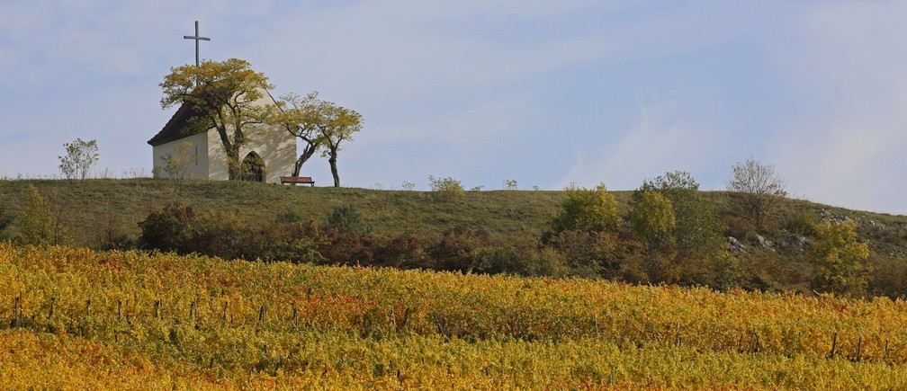 The Bolenberg chapel sits on a rise overlooking vineyards where leaves change colors to mark a change in the season in Orschwihr in the Alsace region of France, October 12, 2015.
