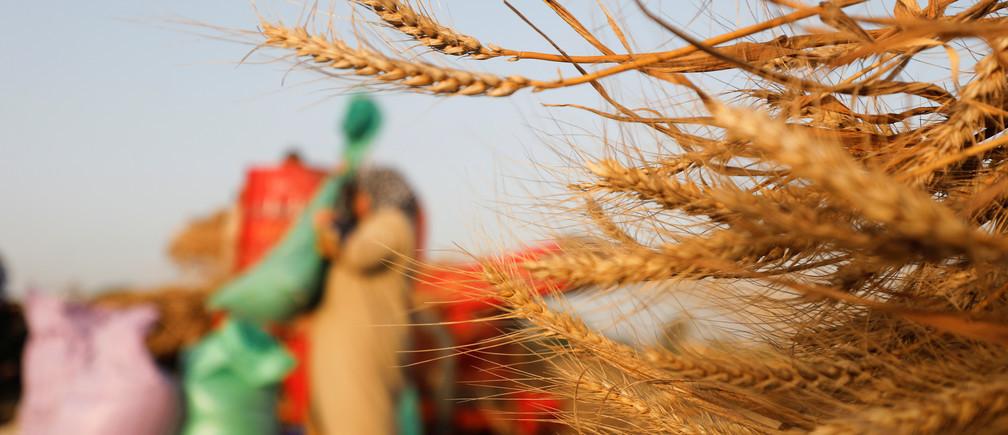 Es probable que los pobres sean los más afectados por la crisis económica.