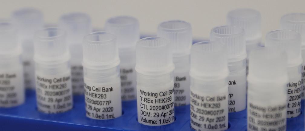 El equipo de un laboratorio británico que trabaja en una potencial vacuna para COVID-19.