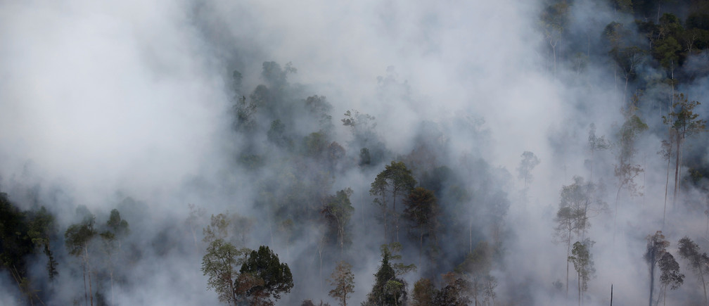 Smoke covers forest during fires in Kapuas regency near Palangka Raya in Central Kalimantan province, Indonesia, September 30, 2019. REUTERS/Willy Kurniawan - RC15185FE9D0