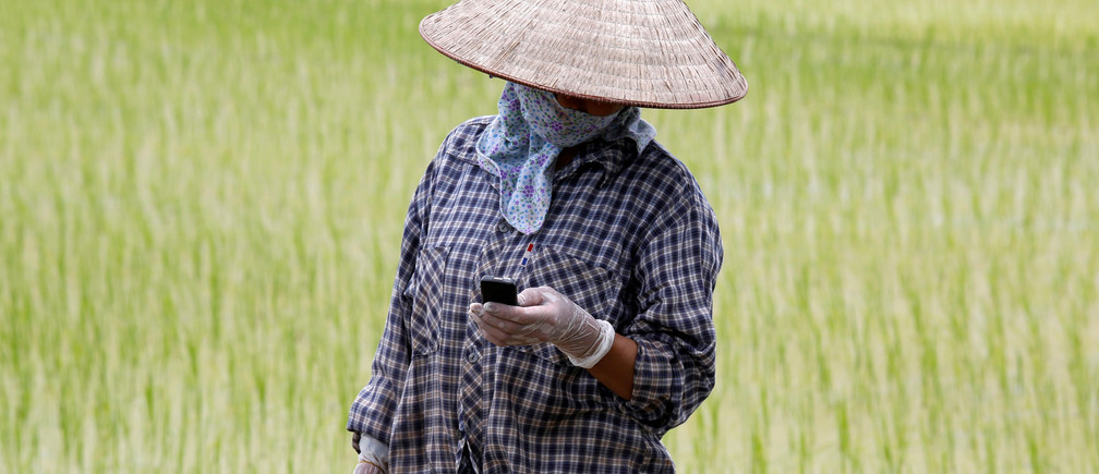 A farmer reads a message on a cell phone while working on a rice paddy field outside Hanoi, Vietnam
