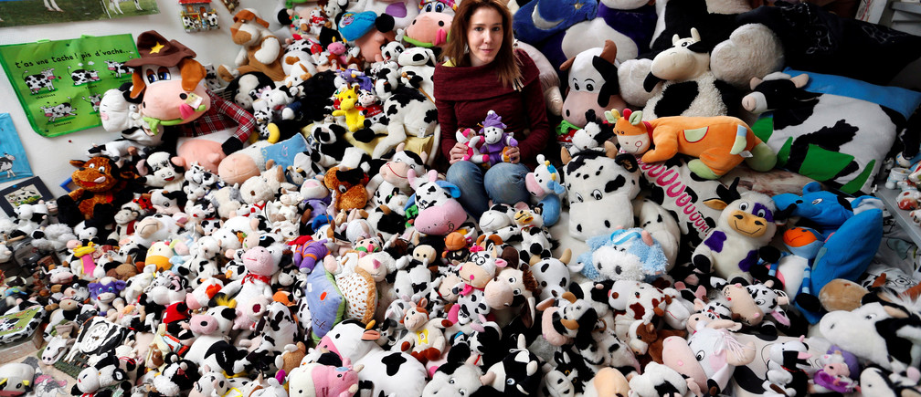 French Model Emeline Duhautoy poses with her collection of 1,679 stuffed toy cows she has been collecting for over seven years at her home in Saint-Omer, northern France, March 12, 2017.  REUTERS/Charles Platiau - RC16D3D95750