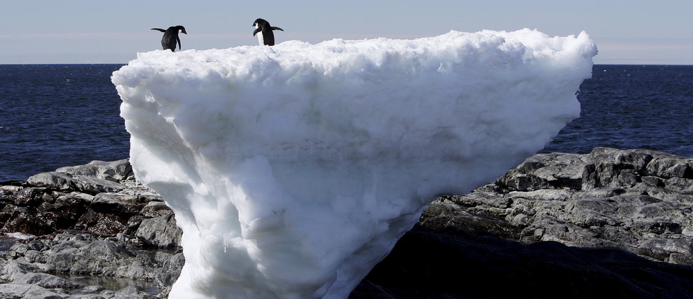 Two Adelie penguins stand atop a block of melting ice on a rocky shoreline at Cape Denison, Commonwealth Bay, in East Antarctica in this January 1, 2010.