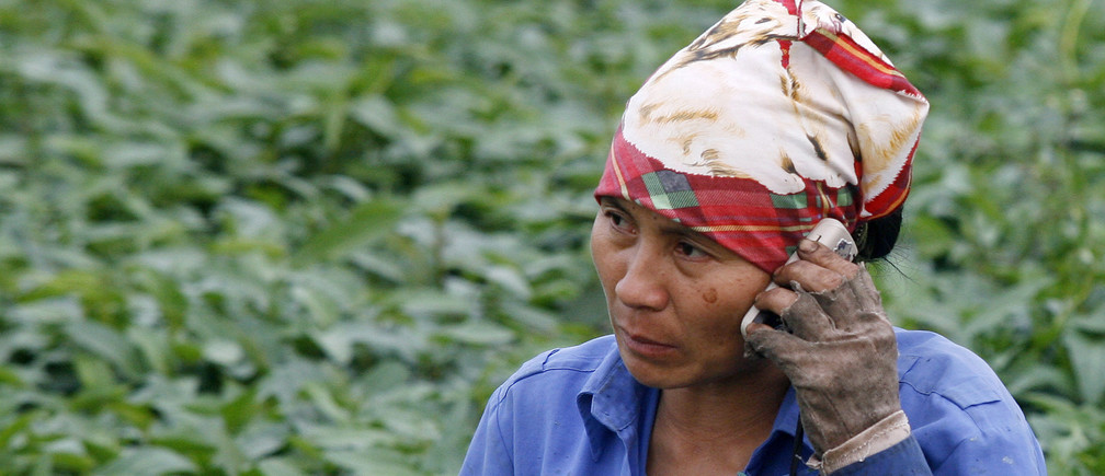 A farmer uses a mobile phone on her morning glory vegetable field in Bach Lien village outside Hanoi March 31, 2010. REUTERS/Kham (VIETNAM - Tags: AGRICULTURE SOCIETY) - GM1E63V1U9T01