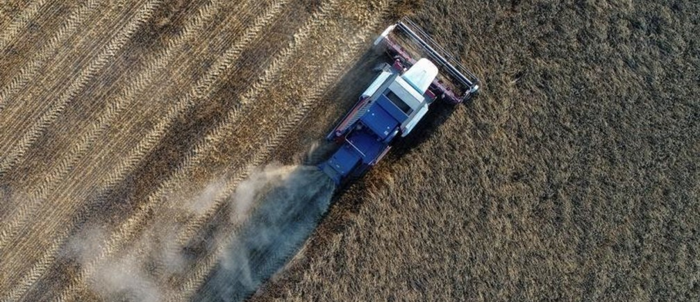 "A combine, taken with a drone, harvests wheat in a field of the ""Zemlyaki"" farm in Krasnoyarsk region, Russia August 26, 2017. Picture taken August 26, 2017. REUTERS/Ilya Naymushin - RC14BCACF860"