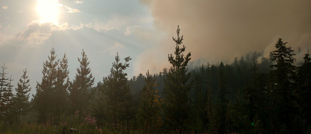 Wildfire burns in Willamette National Forest, Oregon, U.S. made available on August 11, 2017.    Courtesy U.S. Forest Service Willamette National Forest/Handout via REUTERS ATTENTION EDITORS - THIS IMAGE HAS BEEN SUPPLIED BY A THIRD PARTY. - RC1F50580A10