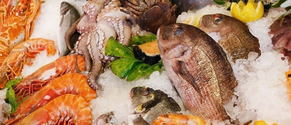 Something fishy: corruption is making the trade in fish a threat to sustainability