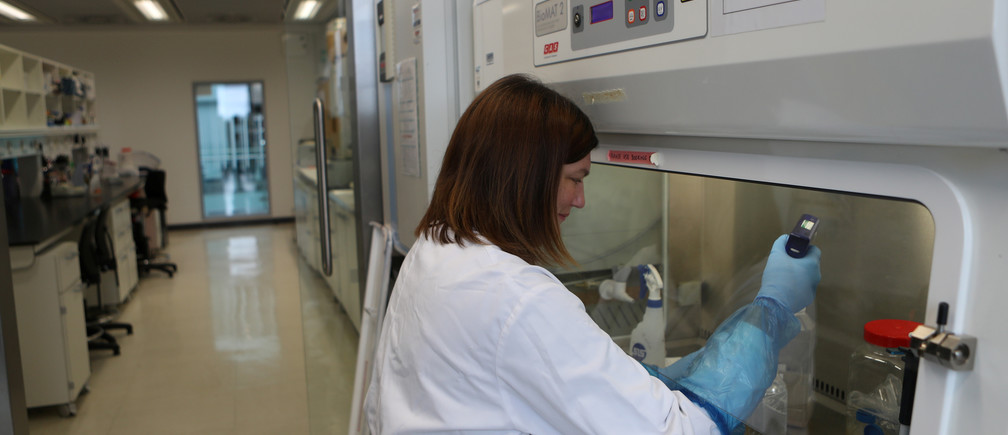 A scientist works in the lab at the Roslin Institute in Edinburgh, Scotland, amid the outbreak of the coronavirus disease (COVID-19), May 13, 2020. Picture taken May 13, 2020. REUTERS/Russell Cheyne - RC2EOG9CTZFH