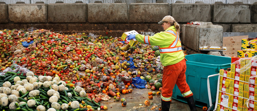 A worker dumps pre-consumer food waste before being feed to black soldier fly larvae at the Enterra Feed Corporation in Langley, British Columbia, Canada, March 14, 2018.  Picture taken March 14, 2018.  REUTERS/Ben Nelms - RC1E93FAC8B0