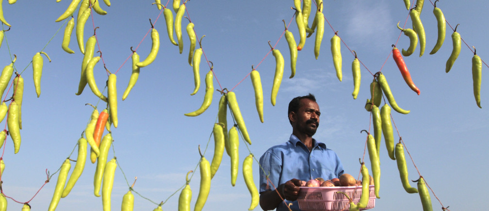A vendor carries a basket containing onions and potatoes to prepare Chilli Bhaji, a local cuisine, at his stall decorated with green chillies to attract customers, on the Marina beach in the southern Indian city of Chennai July 10, 2012. REUTERS/Babu (INDIA - Tags: SOCIETY FOOD TPX IMAGES OF THE DAY BUSINESS) - GM1E87A1PJX01