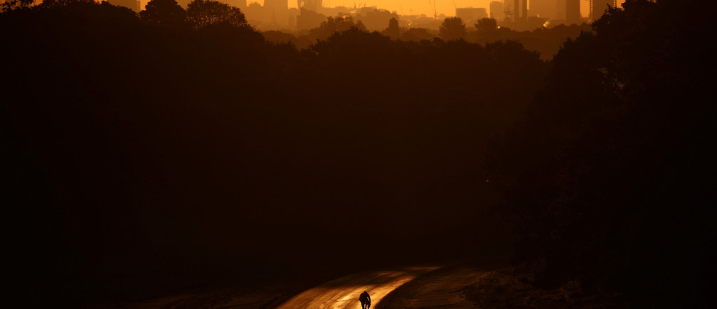 The sun rises behind The Shard and the financial district as a cyclist rides through Richmond Park in London, Britain, May 13, 2019.
