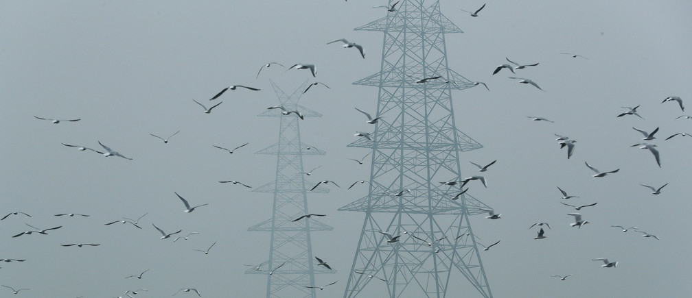 Birds fly next to electricity pylons on a smoggy afternoon in the old quarters of Delhi, India, October 30, 2019. REUTERS/Adnan Abidi     TPX IMAGES OF THE DAY - RC11DB8A01E0