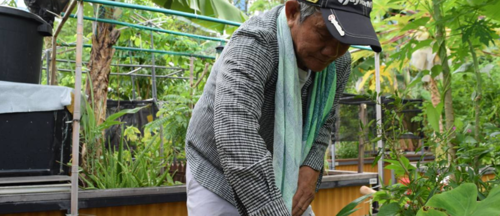 Retired taxi driver Roger Loh tending to his plants at an allotment garden in Singapore March 6, 2019.