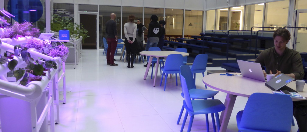 People gather in Klarna office in Stockholm, Sweden February 17, 2016. Klarna, the 10-year-old Swedish e-commerce firm which is now one of Europe's most highly valued tech start-ups, expects revenues to rise by about 40 percent this year as it moves into the U.S. market, where it has mounted a direct challenge to online payments giant Paypal . Picture taken February 17, 2016. REUTERS/Mia Shanley - GF10000321015