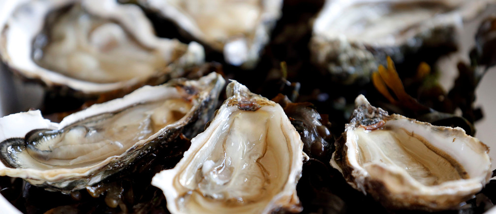 Oysters are pictured on the Re Island, where an automatic oyster vending machine is set at l'huitriere de Re in Ars en Re, Southwestern France, August 2, 2017. Picture taken August 2, 2017. REUTERS/Regis Duvignau - RC143E6C3FF0