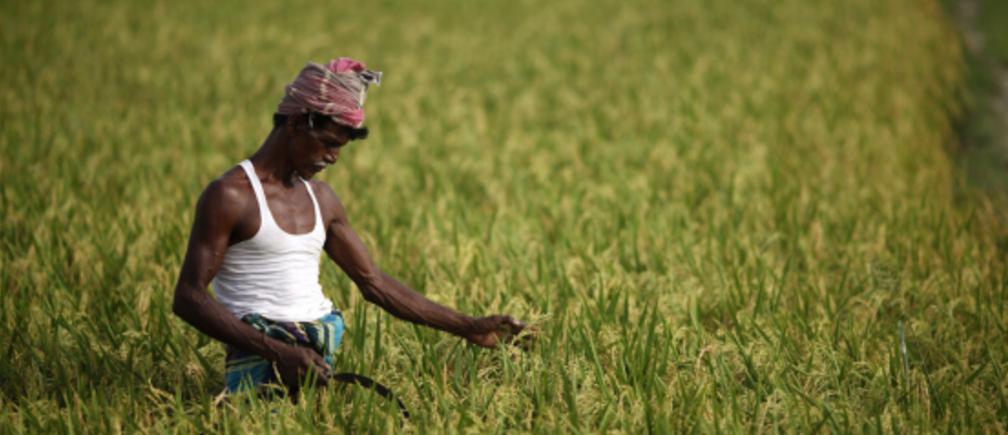 由于对低附加值出口的依赖,贫穷国家容易受到外部冲击的影响。