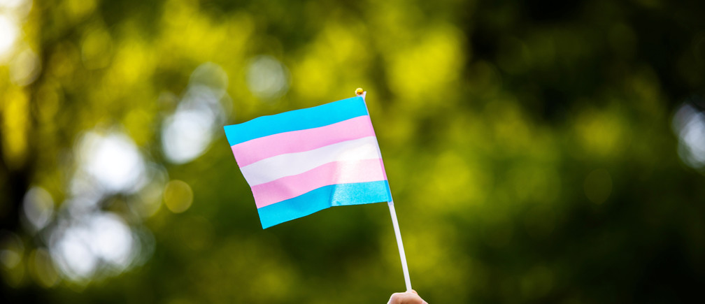 Transgender rights activist waves a transgender flag as they protest the killings of transgender women this year, at a rally in Washington Square Park in New York, U.S., May 24, 2019. REUTERS/Demetrius Freeman - RC1781183F20