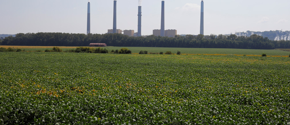 Soybeans grow in front of the Kentucky Utilities Ghent Generating Station, a coal-fired power-plant, along the Ohio River in Vevay, Indiana, U.S., September 22, 2017.  Photograph taken at N38°45.502' W85°02.963'.  Photograph taken September 22, 2017.   REUTERS/Brian Snyder - RC1FCCADE810