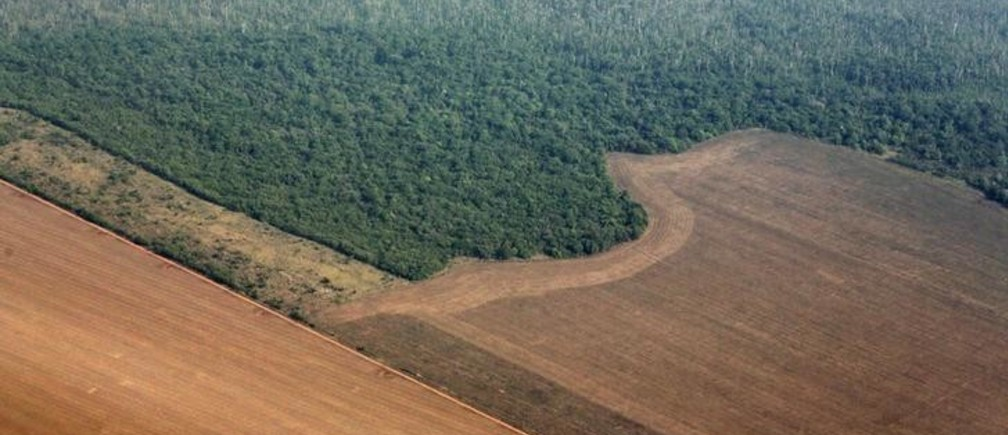 An aerial view shows the Amazon rainforest (top) bordered by land cleared to prepare for the planting of soybeans, in Mato Grosso state, western Brazil, October 2, 2015. Picture taken October 2, 2015. REUTERS/Paulo Whitaker