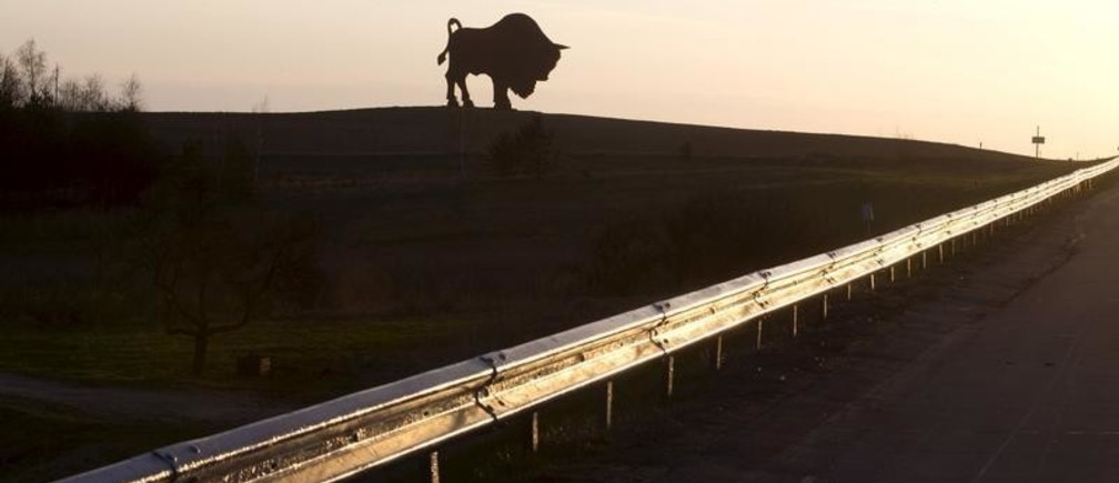 A giant metal statue of a bison is seen in a field near the village of Dudichi, southwest of Minsk, April 24, 2015. European bison, a national symbol of Belarus, is the largest wild animal in the country. REUTERS/Vasily Fedosenko - GF10000071169