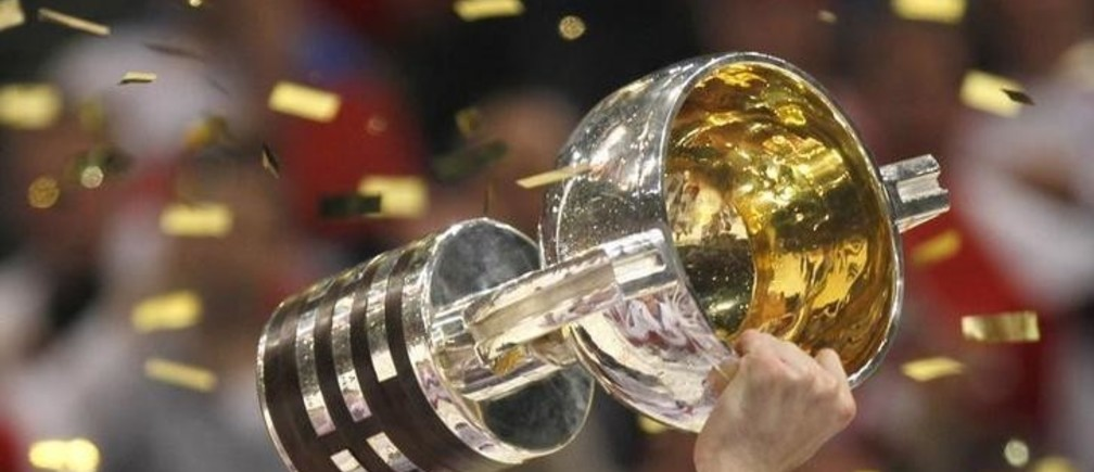 A player of the Czech Republic holds the trophy after beating Russia in the gold medal game at the Ice Hockey World Championships in Cologne May 23, 2010.  REUTERS/Petr Josek  (GERMANY - Tags: SPORT ICE HOCKEY IMAGES OF THE DAY)