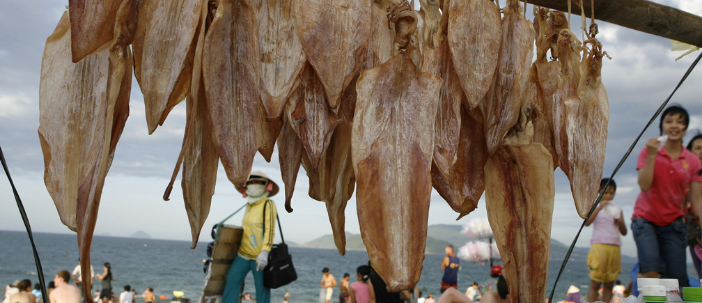 Dried squids are hung for sale on the beach in Nha Trang resort city, central Vietnam June 19, 2008.  REUTERS/Kham (VIETNAM) - GM1E46K00N101