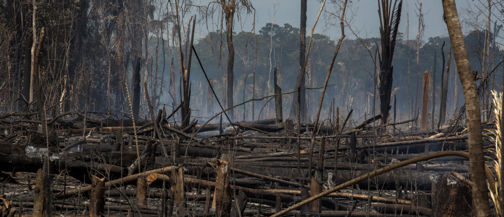 Burned for opening of soybean field in the region near Flona Tapajós. Some of the uncontrolled fires pass into an area controlled by ICMBio.