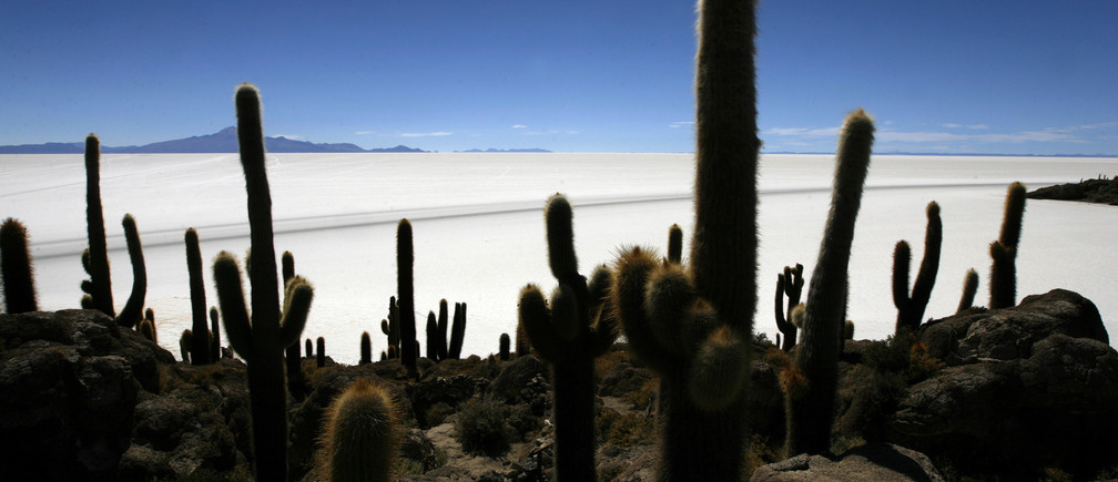 The world's largest salt flat, the Salar de Uyuni, is seen from Incahuasi island in the south of Bolivia at 3676 meters above mean sea level, August 21, 2008. REUTERS/Jorge Silva (BOLIVIA) - RTR21R31