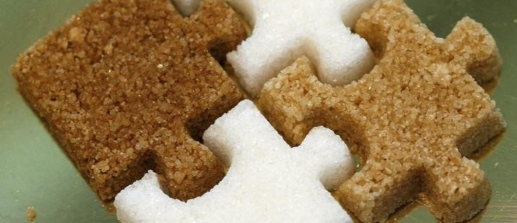 Puzzle pieces made of different types of sugars are exhibited during the Madrid Fusion 5th International Summit of Gastronomy in Madrid January 16, 2007. REUTERS/Victor Fraile (SPAIN)