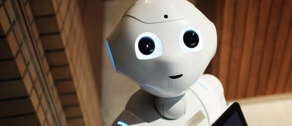 政府のリーダーとしてのロボットは、意思決定を劇的に改善すると評論家は提案し始めています