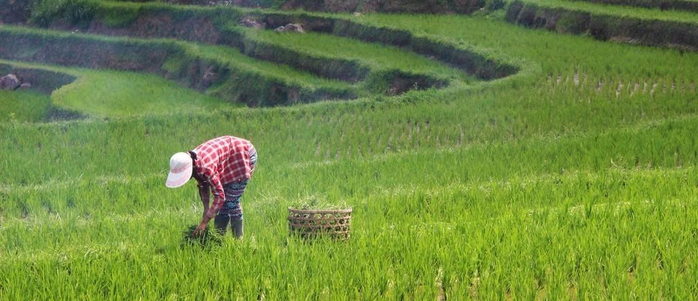 L'agriculture est une opportunité pour la coopération régionale.