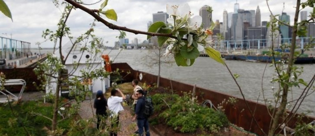People stand on a floating barge, which is planted with fruit trees, as part of the Swale project called a collaborative floating forest, in the East River in the Brooklyn borough of New York, U.S. May 2, 2017. REUTERS/Carlo Allegri
