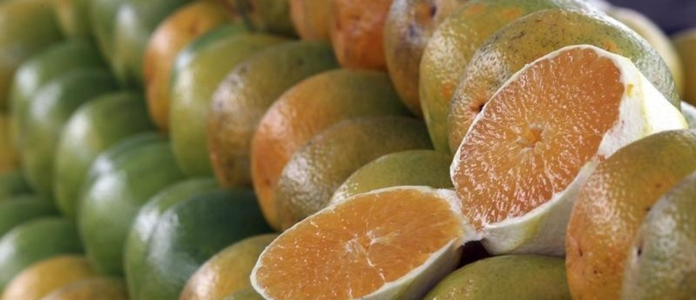 Oranges are seen at a market in Sao Paulo January 11, 2012. According to the Food and Drug Administration, a U.S. juice producer had detected low levels of carbendazim in orange juice concentrate imported from Brazil, the top grower accounting for more than 10 percent of the U.S. supply.