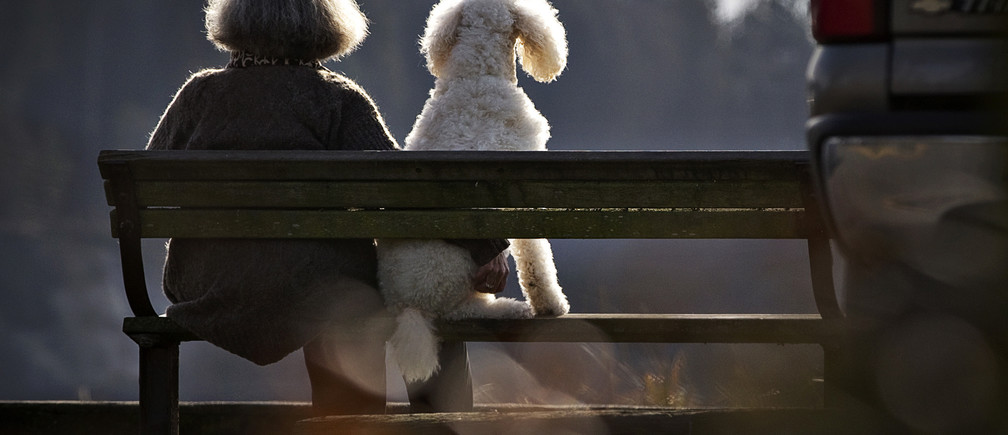 A woman sits on a park bench with her dog along the waterfront beach of Ambleside Park in West Vancouver, British Columbia February 13, 2013.   REUTERS/Andy Clark (CANADA - Tags: SOCIETY ANIMALS TPX IMAGES OF THE DAY) - GM1E92E0KUN01