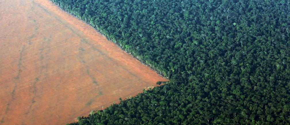 The Amazon rain forest (R), bordered by deforested land prepared for the planting of soybeans, is pictured in this aerial photo taken over Mato Grosso state in western Brazil, October 4, 2015. Brazil will produce a record 97.8 million tonnes of soybeans in 2015/16, a 3.2 percent rise compared to 2014/15, but much of this additional volume will be stored in the country, with little impact on export volumes, estimated on Monday the Brazilian Association of Vegetable Oil Industries