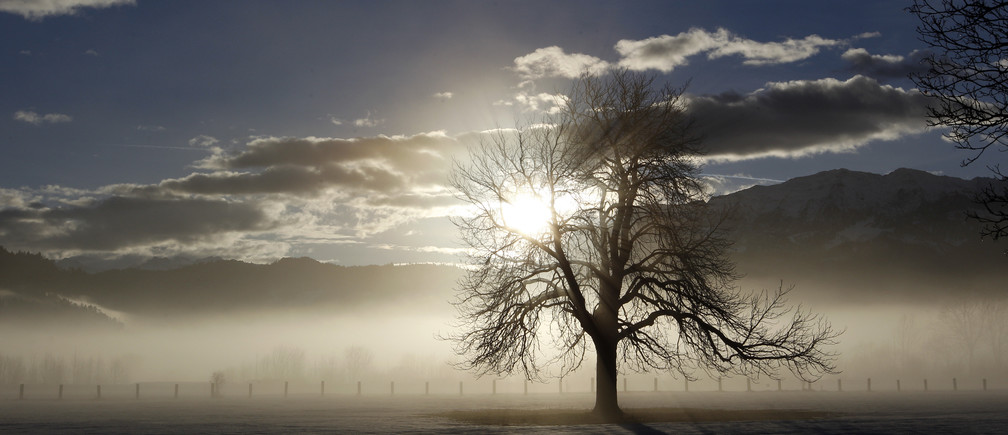 The sun comes up through the fog in the early morning hours over Garmisch-Partenkirchen, southern Germany January 14, 2011.