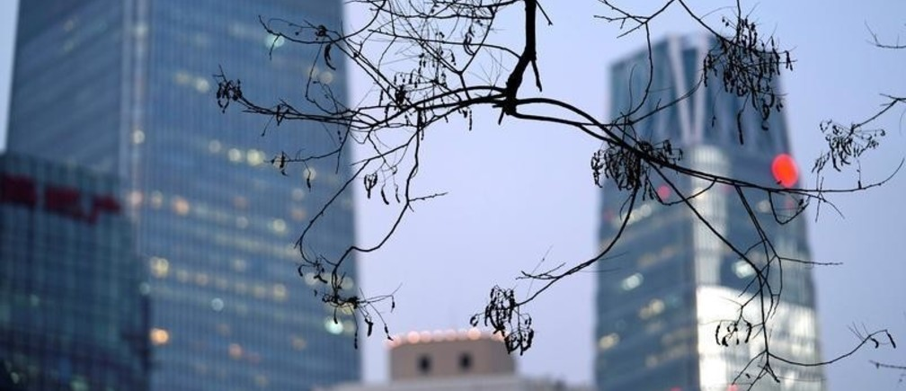 Branches are pictured in front of buildings in Beijing's central business area, China December 14, 2017. REUTERS/Jason Lee - RC14ED52C7F0