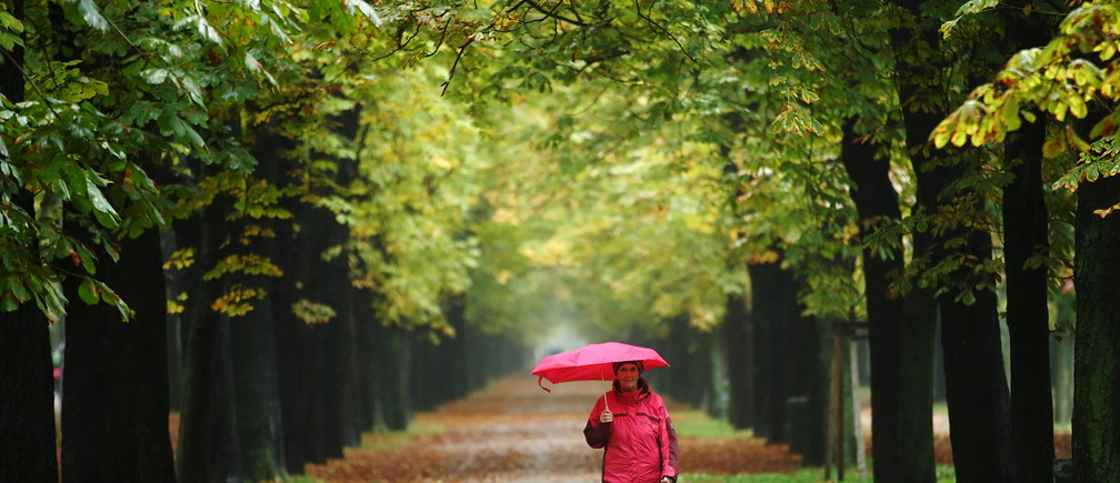 A woman enjoys a walk along an avenue of trees at Prater recreation area on a rainy autumn day in Vienna, Austria, October 16, 2015. REUTERS/Heinz-Peter Bader - GF10000247196