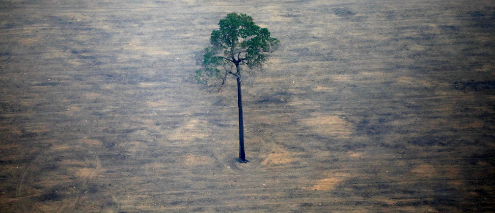 An aerial view shows a deforested plot of the Amazon near Porto Velho, Rondonia State, Brazil, September 17, 2019.