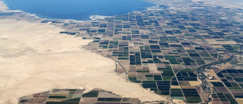 Agricultural farm land is shown near the Salton Sea and the town of Calipatria in California May 31, 2015. California is enduring its worst drought on record.  REUTERS/Mike Blake  - GF10000113719